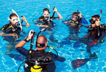 Train in Diving or Have Further Training for New Stars