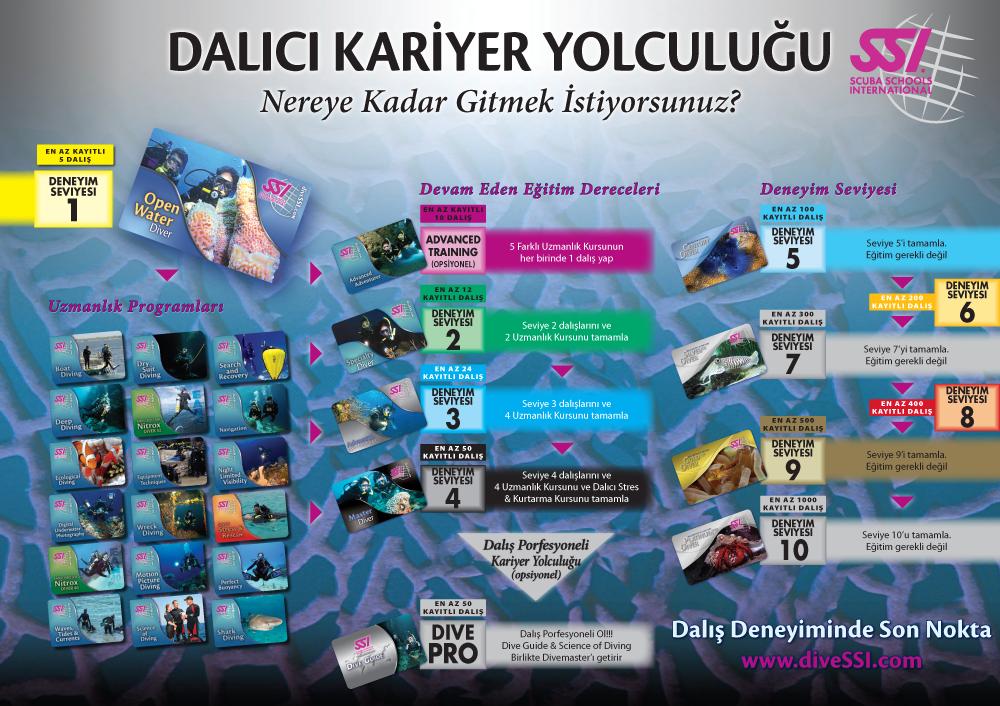 Poster_Diver_BIG (1)